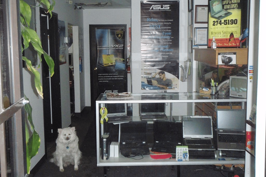 A photo of the store inside, and Prince - our mascot and friend